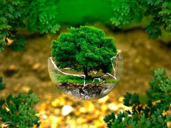 Yeso, escayola y futuro sostenible